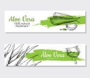 Vector aloe vera hand drawn illustrations. Aloe Vera banner, poster, label, brochure template for business promote.