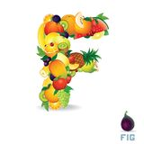 Vector Alphabet From Fruit. Letter F Royalty Free Stock Image