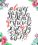 Vector alphabet. Hand drawn letters. Letters of the alphabet written with a brush pen and ink Royalty Free Stock Photography