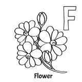 Vector alphabet letter F, coloring page. Flower. Vector alphabet letter F for children education with pink flower. Isolated. Learn to read. Coloring page Stock Images