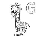 Vector alphabet letter G, coloring page. Giraffe. Vector alphabet letter G for children education with funny cartoon giraffe. Isolated. Learn to read. Coloring Royalty Free Stock Image