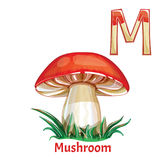 Vector alphabet letter M, coloring page. Mushroom. Vector alphabet letter M for children education with funny cartoon mushroom. Isolated. Learn to read Stock Photo