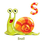 Vector alphabet letter S. Snail Royalty Free Stock Images