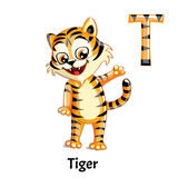 Vector alphabet letter T. Tiger. Vector alphabet letter T for children education with funny cartoon tiger. Isolated. Learn to read Royalty Free Stock Images
