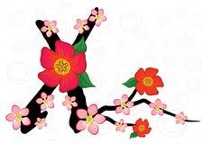 Vector Alphabet With Gentle Sakura Flowers Royalty Free Stock Photos