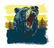Vector Angry Bear Royalty Free Stock Photo