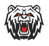 Vector Angry Bear. Head on white background Royalty Free Stock Photography