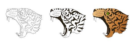 Vector angry leopard portrait. Tiger predator head colored and doodle isolated stock illustration