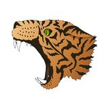 Vector angry leopard portrait. Tiger predator head colorful isolated vector illustration