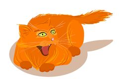 Vector angry red cat isolated vector illustration