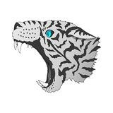 Vector angry snow leopard portrait. Tiger predator head colorful isolated royalty free illustration