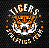 Vector angry tiger sport emblem Royalty Free Stock Photo