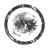 Vector animal eye. Hand drawn. Eps8 Stock Image