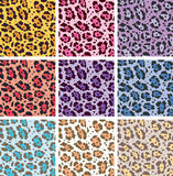Vector animal skin textures of leopard Stock Images