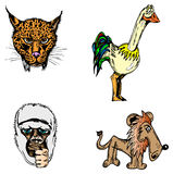 Vector animals Royalty Free Stock Photo
