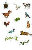 Vector animals Stock Image