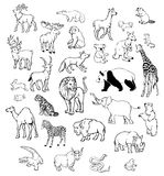 Vector Animals. Vector illustration of set of animals on isolated background Royalty Free Stock Photos