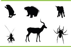 Vector animals collection. Vector silhouettes of different animals stock illustration