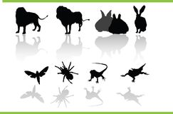 Vector animals collection. Vector silhouettes of different animals vector illustration