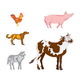 Vector animals illustrations set. Royalty Free Stock Images