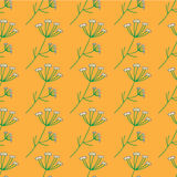 Vector Anise Herb Pattern Royalty Free Stock Photo