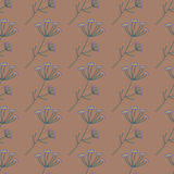 Vector Anise Herb Pattern Royalty Free Stock Photography