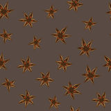 Vector anise pattern Royalty Free Stock Image