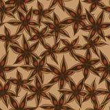 Vector anise pattern Stock Photo