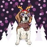 Vector anklers vestindo tiara, vidros e lenço do raindeer do cão do lebreiro Isolado em árvores nevado e em chuveirinhos esboçado Imagens de Stock