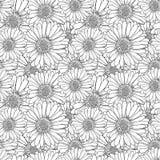 Vector Antistress Kleurende Bloemen, Naadloos Zwart-wit Patroon, stock illustratie