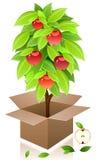 Vector appelboom. Royalty-vrije Stock Foto's