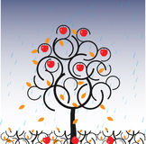 Vector apple tree in autumn. Vector illustration of tree in autumn Stock Photo