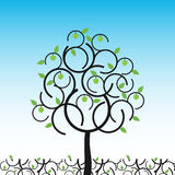 Vector apple tree in summer. Vector illustration of apple tree in summer Stock Photos