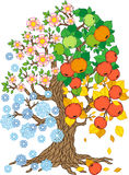 Vector apple tree. Tree collection. Tree season Royalty Free Stock Images