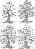 Vector apple tree. Tree collection. Tree season Royalty Free Stock Photo