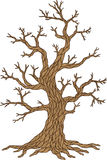 Vector apple tree. Tree collection. Tree season Stock Photo