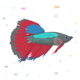 Vector aquarium fish silhouette illustration. Colorful cartoon flat aquarium fish icon for your design. Vector aquarium fish illustration. Colorful cartoon Stock Photo