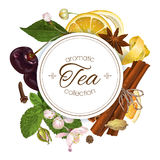 Vector Aromatic Tea Banners Stock Photography