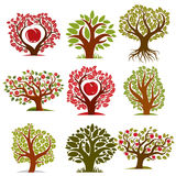 Vector art drawn trees with ripe apples and beautiful red blosso Stock Photos