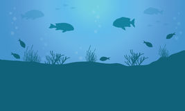Vector art of fish on blue sea background. Landscape collection Royalty Free Stock Image