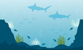 Vector art of fish underwater silhouettes. Collection Royalty Free Stock Photos