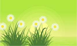Vector art of flower background landscape. Collection Royalty Free Stock Photo