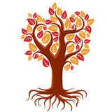 Vector art illustration of branchy autumn tree with strong roots Royalty Free Stock Photo