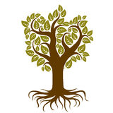 Vector art illustration of branchy tree with strong roots. Tree Royalty Free Stock Images