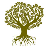 Vector art illustration of branchy tree with strong roots. Tree Stock Photo