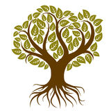Vector art illustration of branchy tree with strong roots. Tree Royalty Free Stock Photography