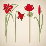 Vector art nouveau elements. Vector art nouveau floral elements for print and design Royalty Free Stock Photo