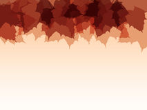 Vector autumn background. Stock Photography