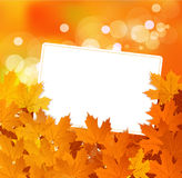 Vector autumn background with greeting card royalty free stock image