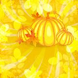 Vector autumn background Royalty Free Stock Photo